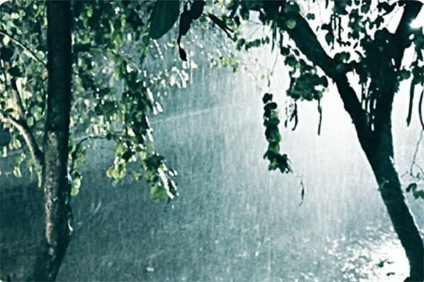Tiếng mưa rơi có thể tạo nên ASMR