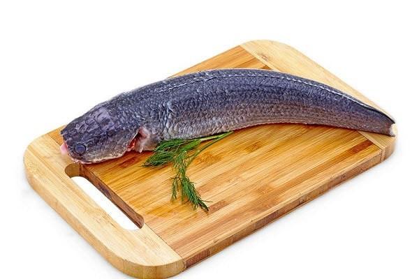 Nồng độ F trong cá lóc cao