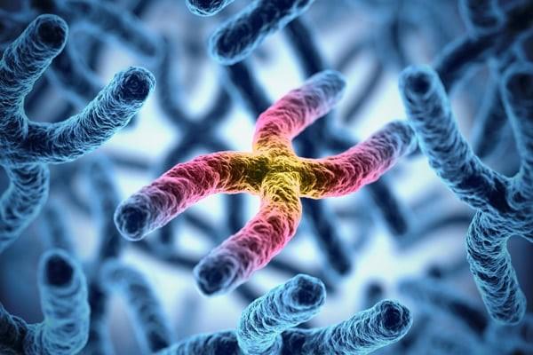 Xét nghiệm nhiễm sắc thể là một xét nghiệm quan trọng