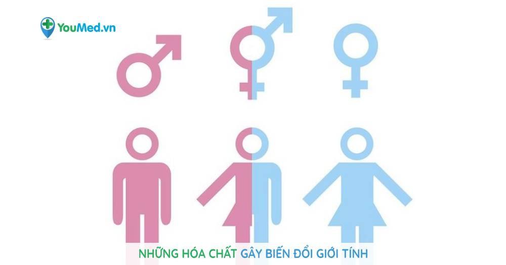 Những hóa chất gây biến đổi giới tính