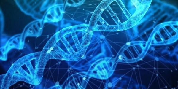Đột biến gen gây ra sarcoma đa dạng không biệt hóa