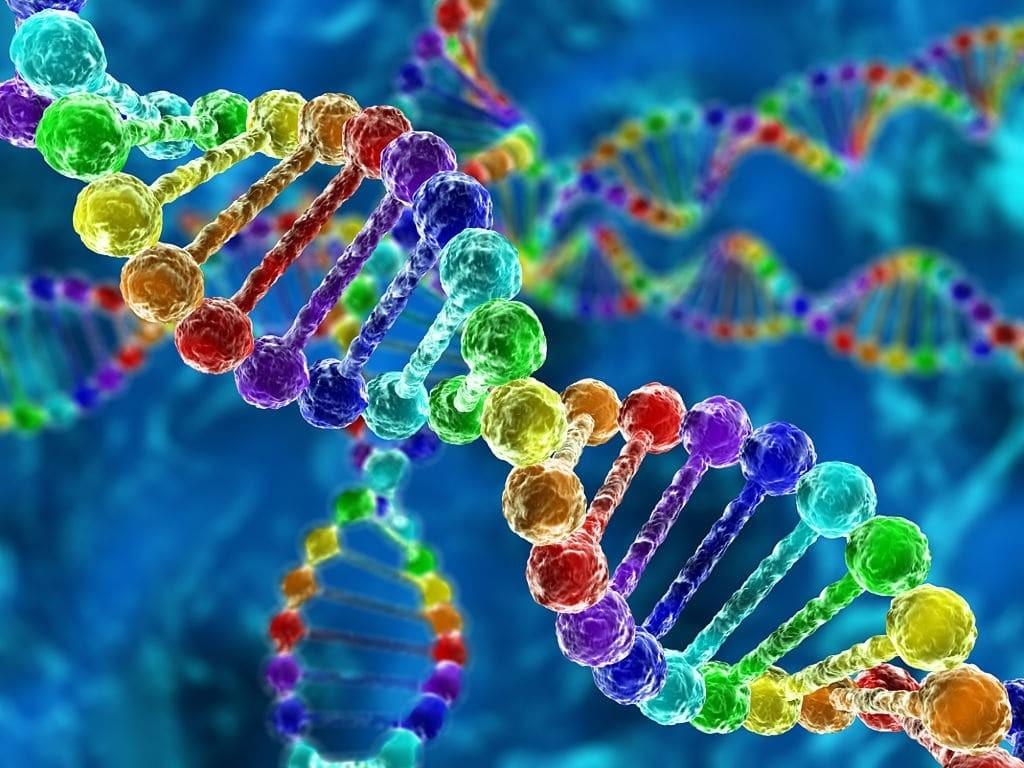 Protein cấu trúc từ các axit amin