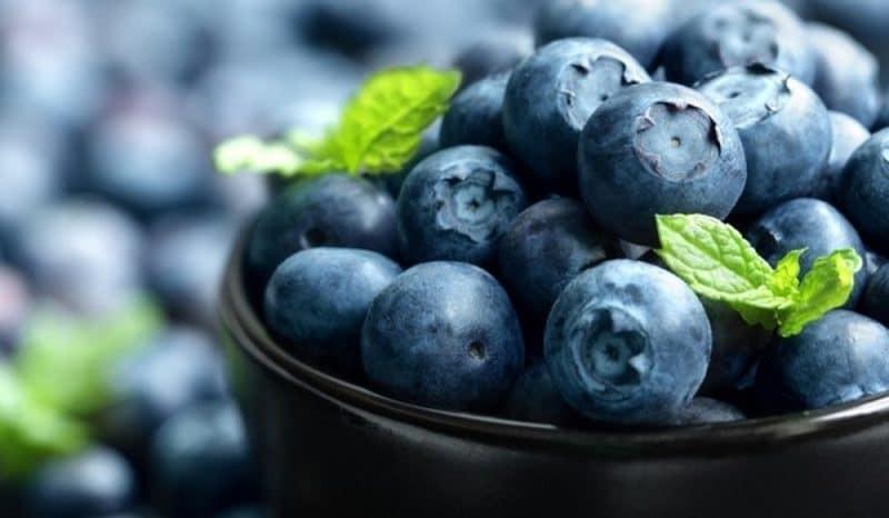 Trong quả chứa nhiều chất dinh dưỡng có lợi cho sức khỏe
