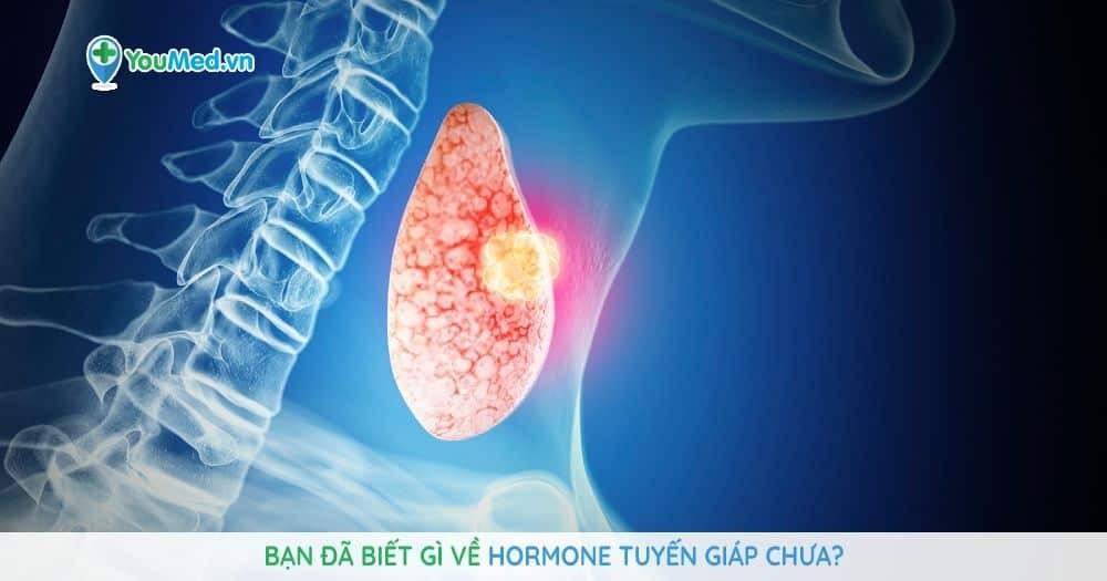 Bạn đã biết gì về Hormone tuyến giáp chưa