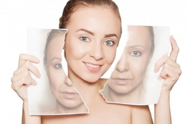 Một số giả thuyết cho rằng hormone DHEA ở người có vai trò chống lão hóa