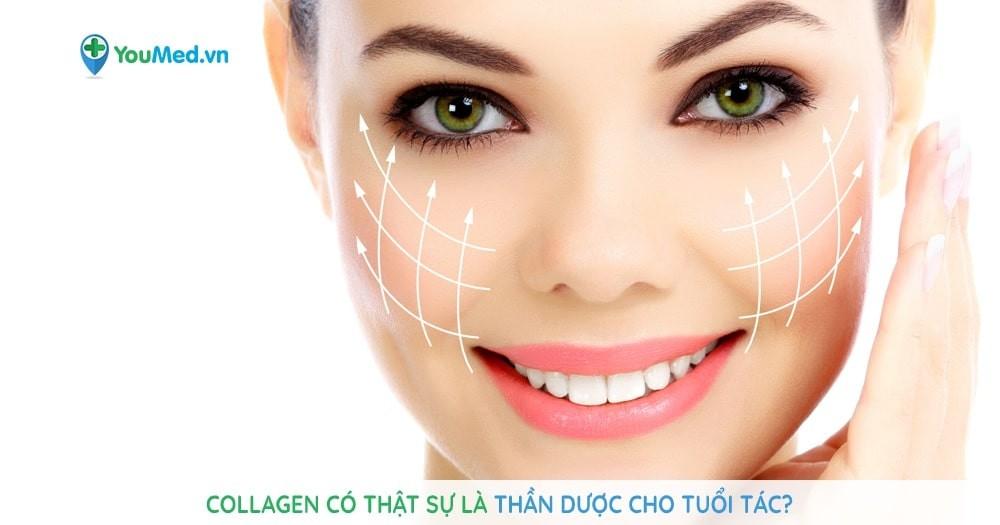 Collagen là gì và những điều bạn cần biết