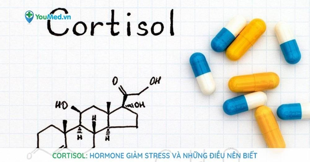 Cortisol: Hormone giảm stress và những điều nên biết