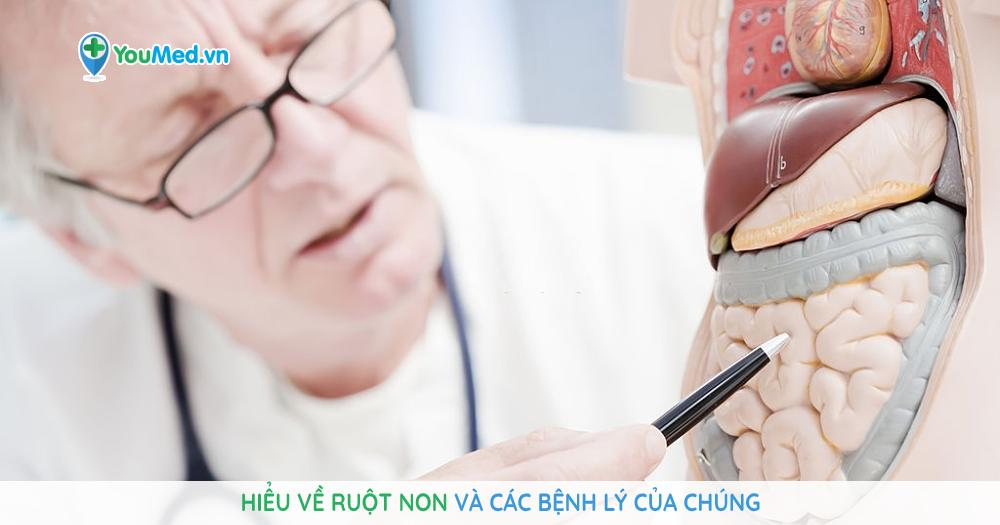 Hiểu về ruột non và các bệnh lý của chúng