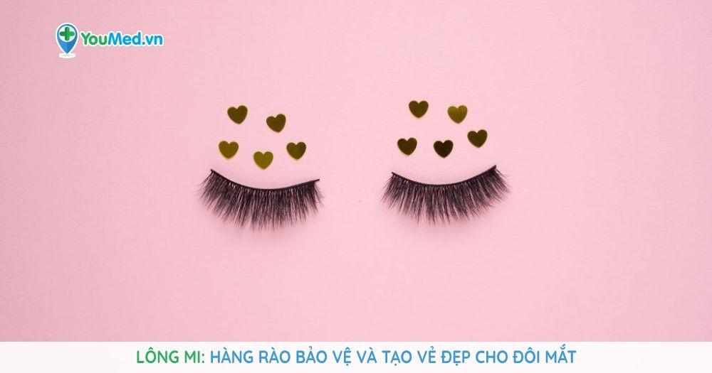 Lông mi: Hàng rào bảo vệ và tạo vẻ đẹp cho đôi mắt