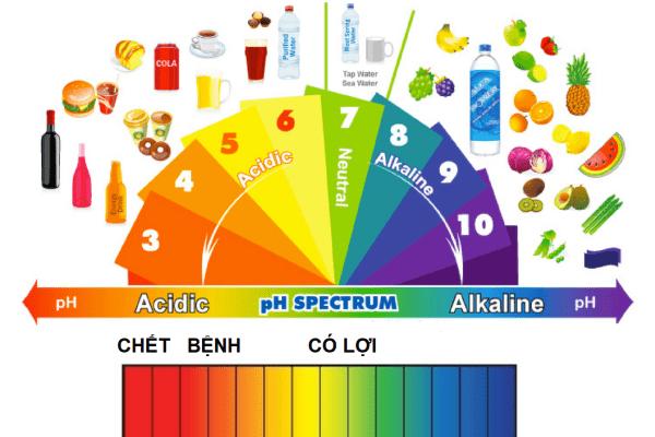 Làm thế nào để cân bằng độ pH cơ thể