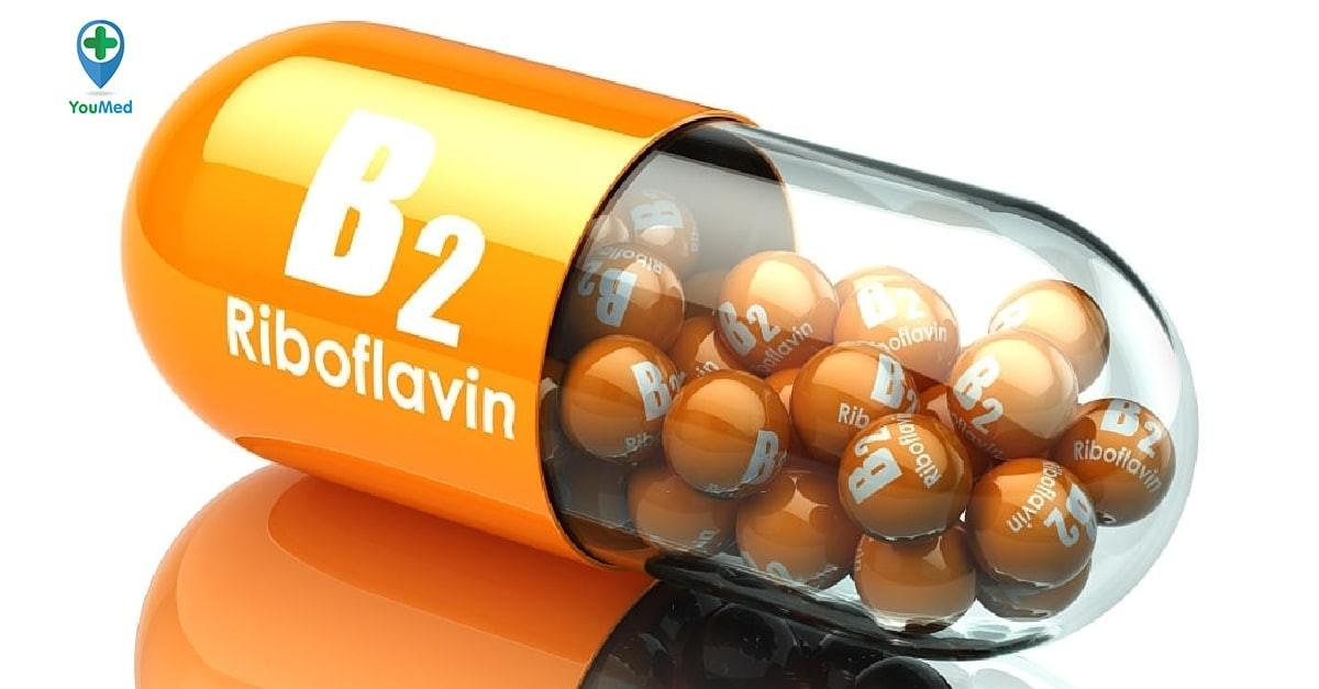 Vitamin B2: Vai trò, liều dùng và lưu ý khi sử dụng