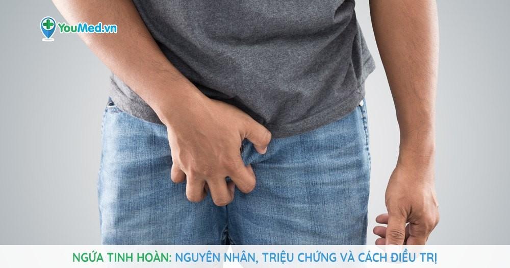 Ngứa tinh hoàn: Nguyên nhân, triệu chứng và cách điều trị