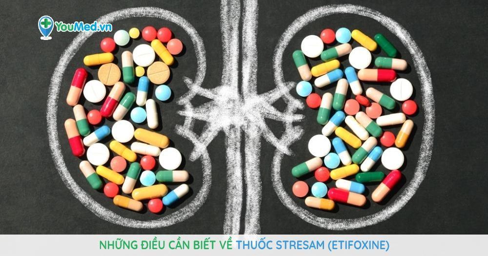 Những điều cần biết về thuốc Stresam (etifoxine)