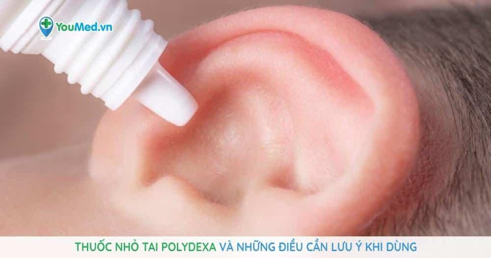 Thuốc nhỏ tai Polydexa và những điều cần lưu ý khi dùng