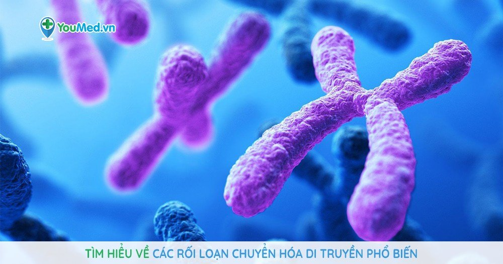 Tìm hiểu về các rối loạn chuyển hóa di truyền phổ biến