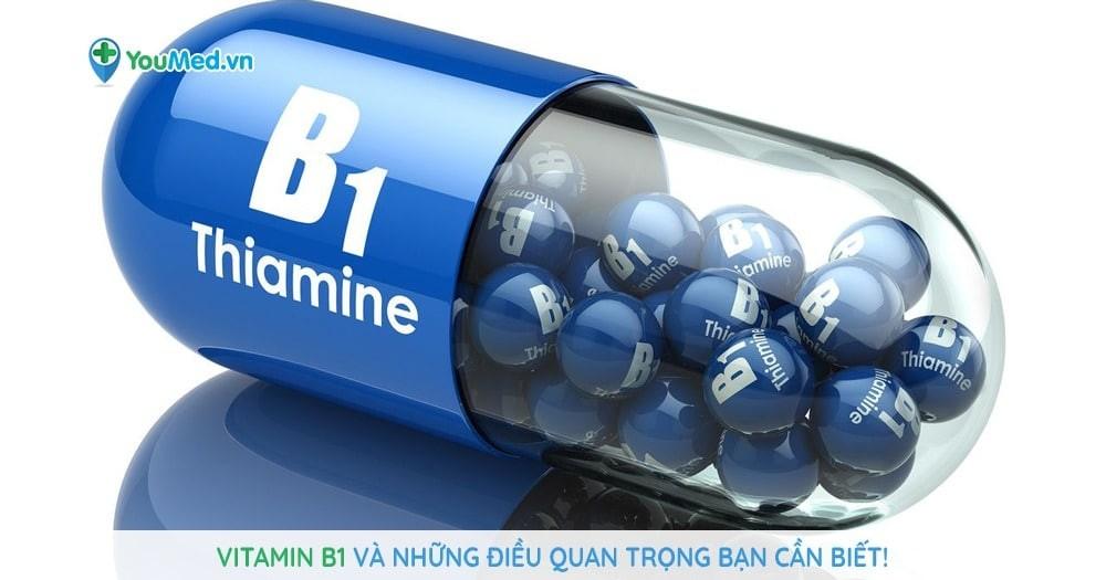 Vitamin B1 và những điều quan trọng bạn cần biết