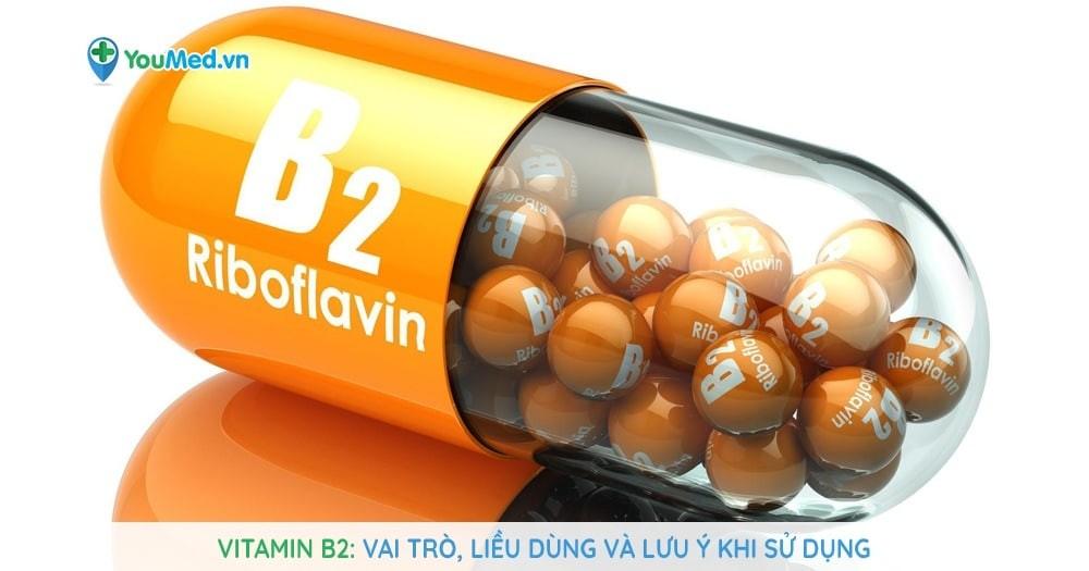Vitamin B2 - Vai trò, liều dùng và lưu ý khi sử dụng