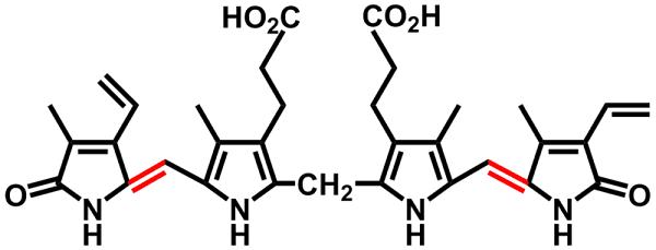 Cấu tạo của bilirubin