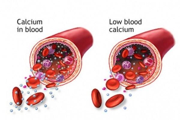 Nồng độ canxi trong máu có ảnh hưởng đến cường tuyến cận giáp