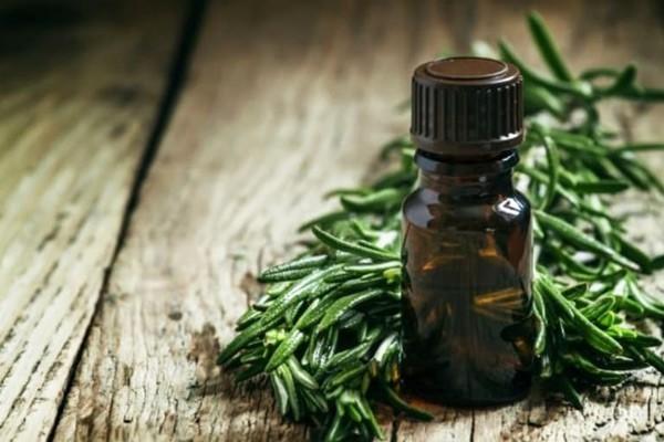 Tinh dầu giúp điều trị một số loài giun