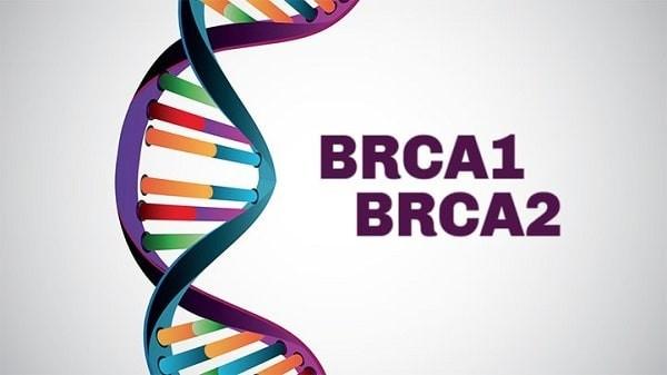 gen BRCA