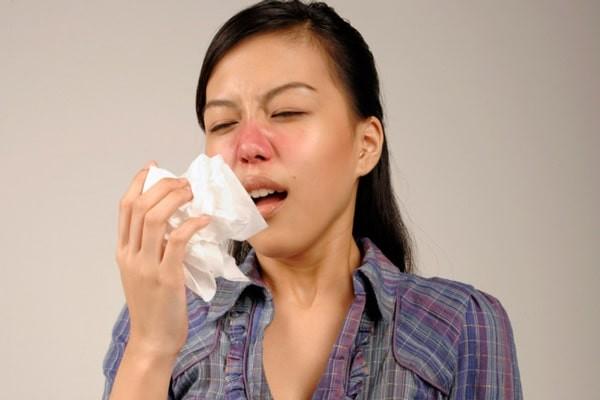 Dược liệu có thể trị sổ mũi