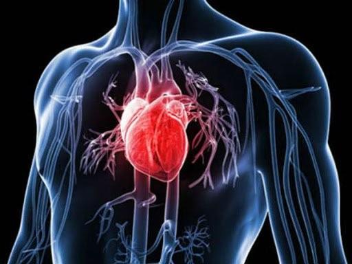 Ngưng tim có thể gây tử vong nếu không được điều trị đúng cách