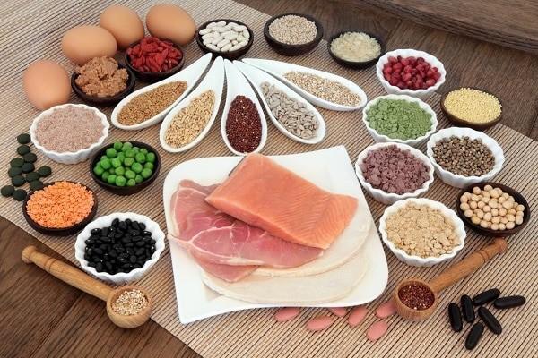 protein từ động vật và thực vật