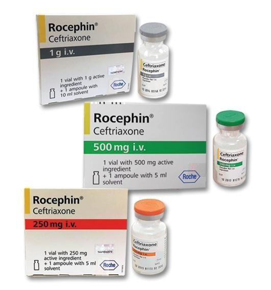 thuoc-rocephin-ceftriaxone