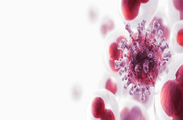 U tế bào cận hạch thần kinh bắt nguồn từ một số tế bào thần kinh và được phân tán khắp cơ thể