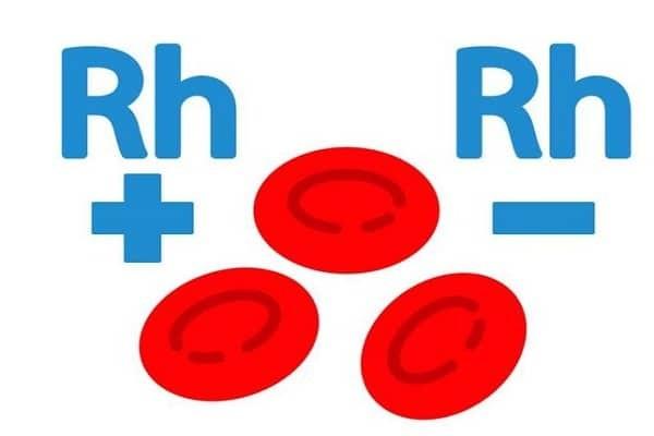Yếu tố Rh trong máu