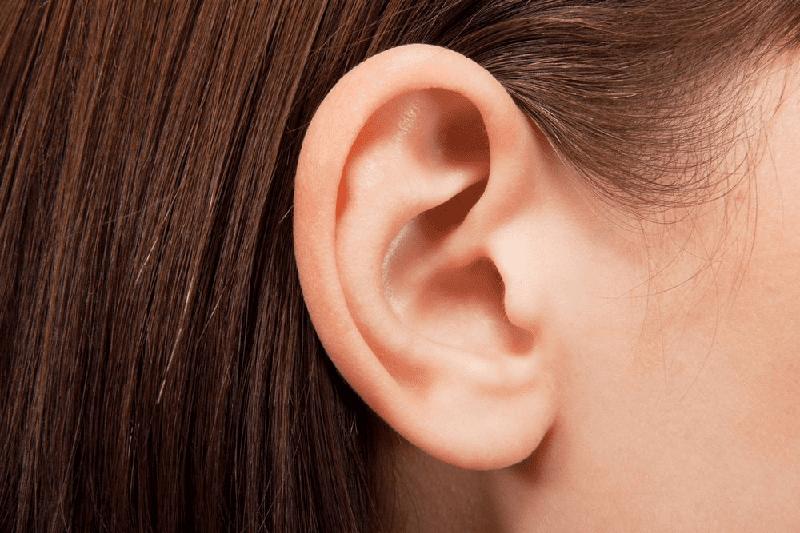 Vị trí vành tai ở người