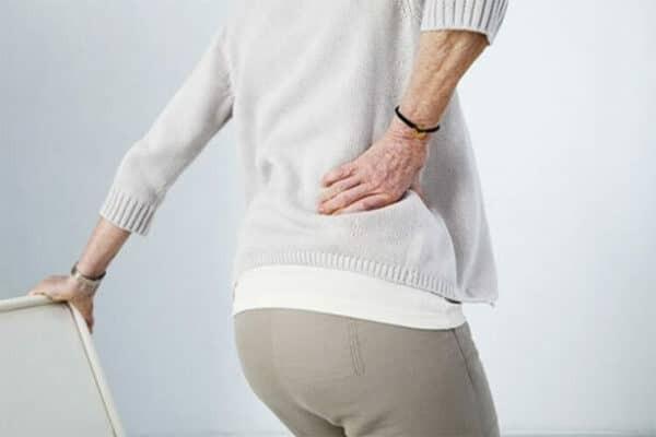 Vị thuốc Bạch hạc có thể hỗ trợ đau nhức xương khớp hiệu quả