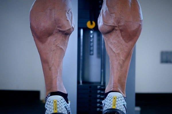 Bắp chân to cơ