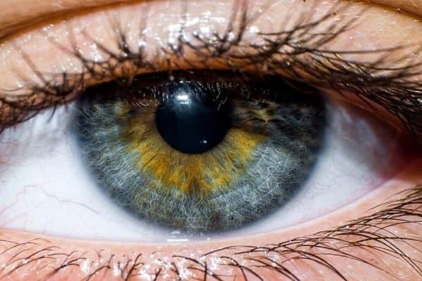 Người bị hội chứng nhốt trong có thể cử động mắt bình thường