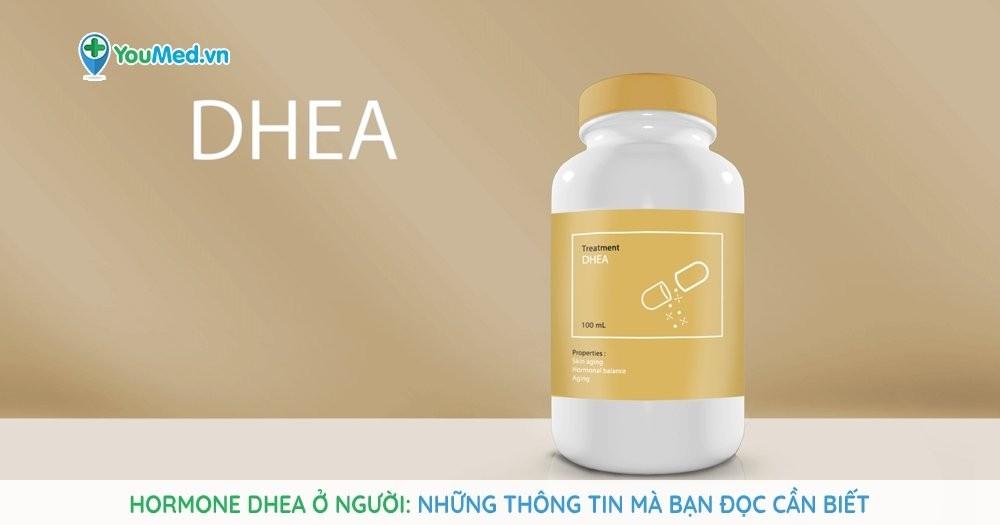 Hormone DHEA ở người - Những thông tin mà bạn đọc cần biết