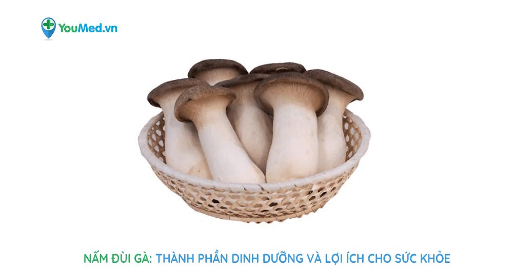 Nấm đùi gà: Lợi ích sức khỏe và các món ngon dễ làm