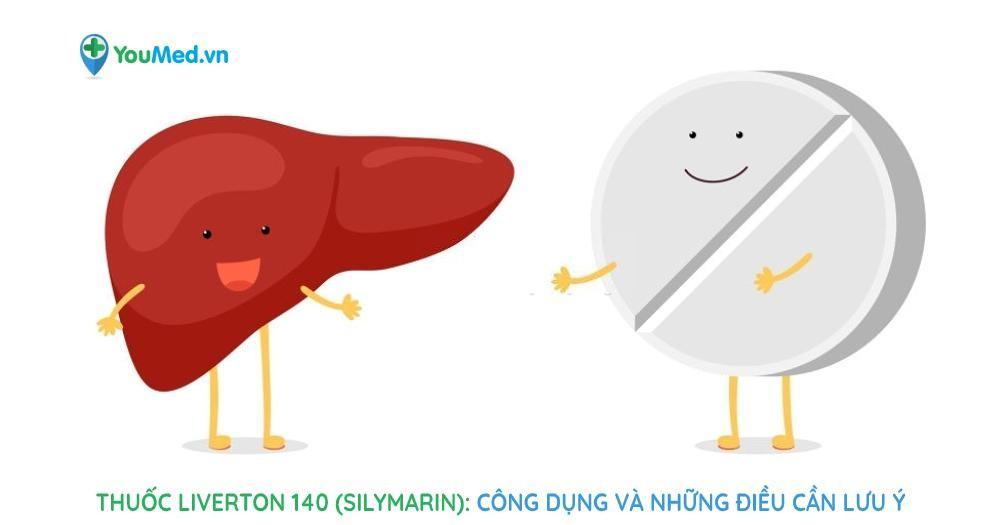 Thuốc Liverton 140 (silymarin) Công dụng và những điều cần lưu ý