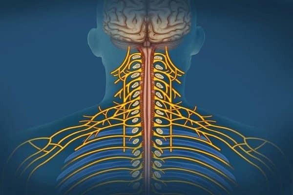 Biến chứng tổn thương thần kinh vĩnh viễn