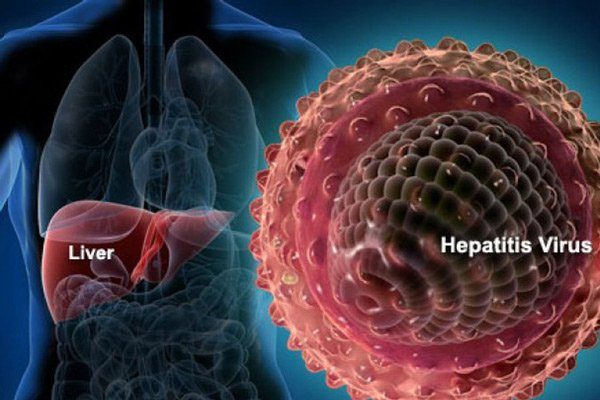 Tiếp xúc với tác nhân viêm gan B có thể gây nên bệnh cầu thận màng