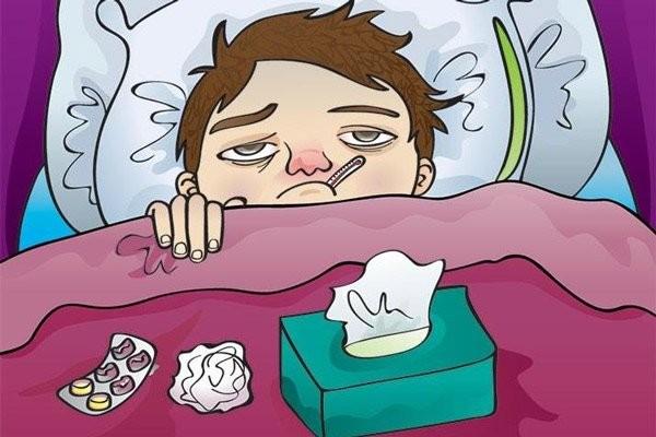 Bạn có thể dùng vị thuốc này để trị cảm sốt