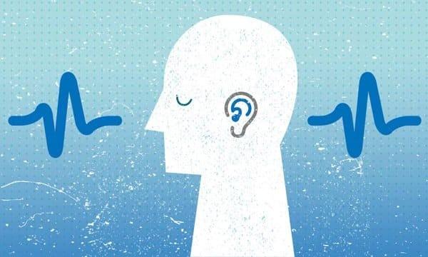 Ốc tai đảm nhận chức năng nghe
