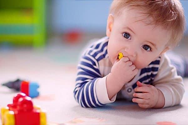 Trẻ lúc này đã bắt đầu bò và biết tìm đồ chơi ở quanh phòng