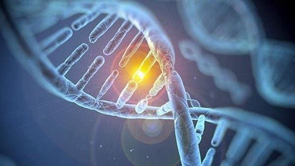 Hội chứng Lynch làm tăng nguy cơ mắc ung thư đại tràng trong tương lai