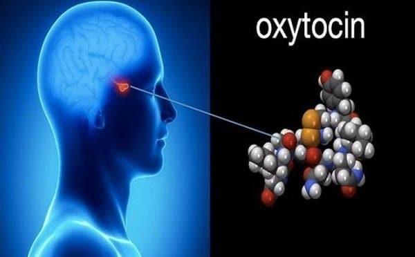 Hormone Oxytocin
