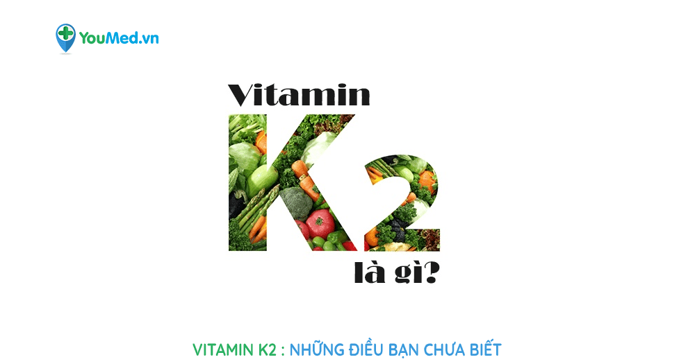 vitamin k2 : những điều bạn chưa