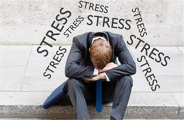 Ngò rí có thể làm giảm căng thẳng, lo âu