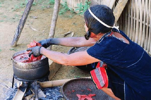 Củ nâu được dùng để nhuộm vải
