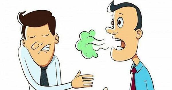 Rau mùi chữa hôi miệng