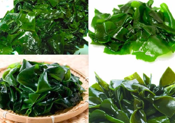 Tảo biển xuất hiện nhiều trong các món ăn của Hàn, Nhật
